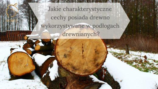 obrazek tytułowy podłogi drewniane